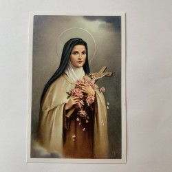 Bidprentje heilige Theresia...