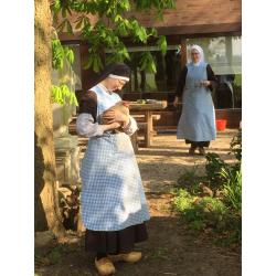 Zusters verzorgen de kippen