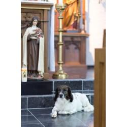 Kloosterhond Lotte in de kapel